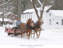 old-sturbridge-village-sleigh-horses-web