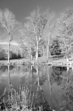 concord-river-spring-view